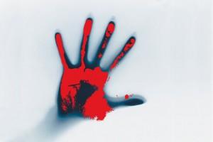 Marie-Aude Murail Blutsverdacht