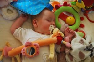 Marie-Aude Murail Der Babysitter-Profi