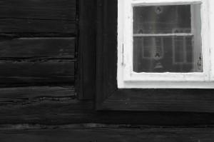 Dianne Touchell - Zwischen zwei Fenstern
