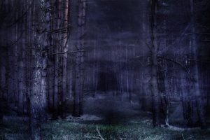 Melissa Albert - Hazel Wood: Wo alles beginnt